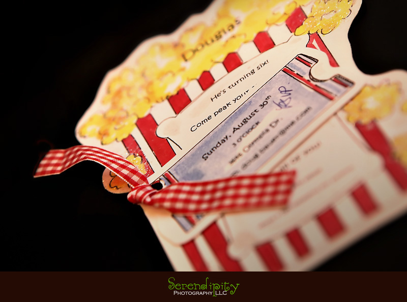 River Oaks Photography Children Birthday Party Invitation